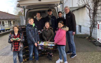 Mentor-Schulen sammeln über 2000 Kilo Lebensmittel